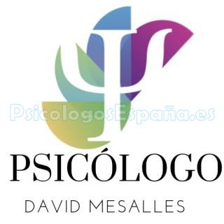 David Mesalles Piscólogo Huesca Img(1)
